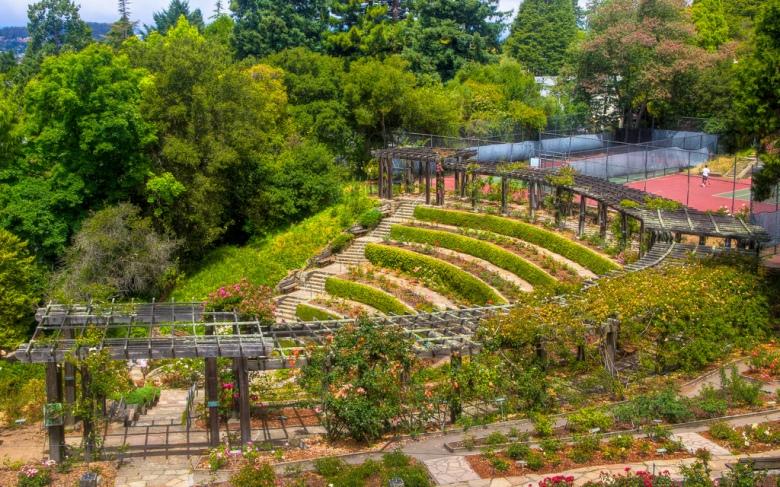 Rose-Garden-Courts-Courtesy-emceehammr